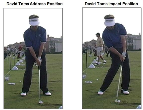 David Toms Impact